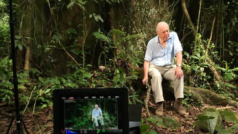 """BBC """"Green Planet"""" Costa Rica"""