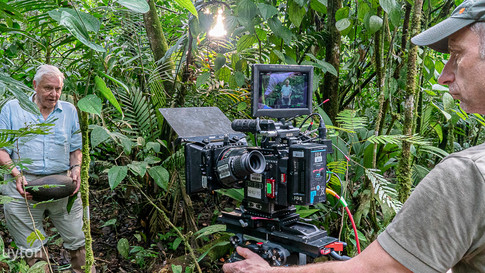"BBC ""Green Planet"" with David Attenborough in Costa Rica"