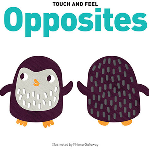 Touch and Feel Board Book Opposites
