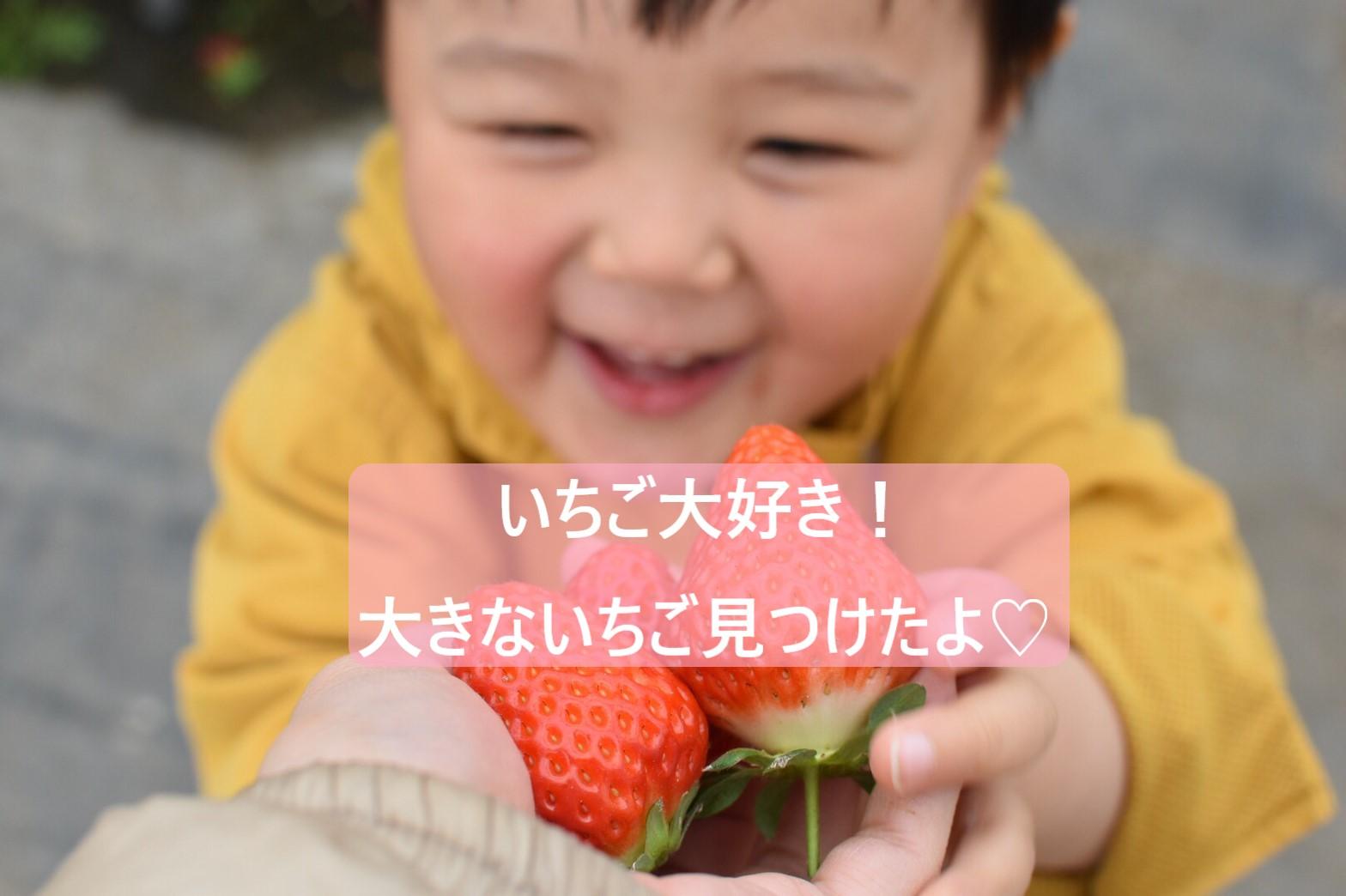 いちご大好き!.jpg