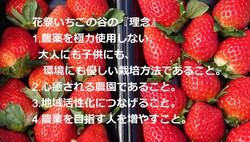 DSC_0778_edited