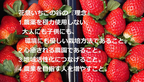 DSC_0778_edited.jpg