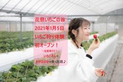 2021年1月いちご狩りオープン!.jpg