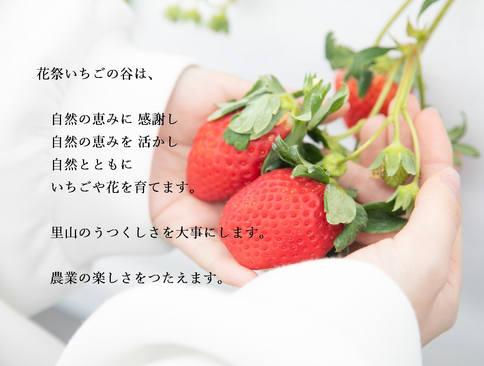 トップ 理念.jpg