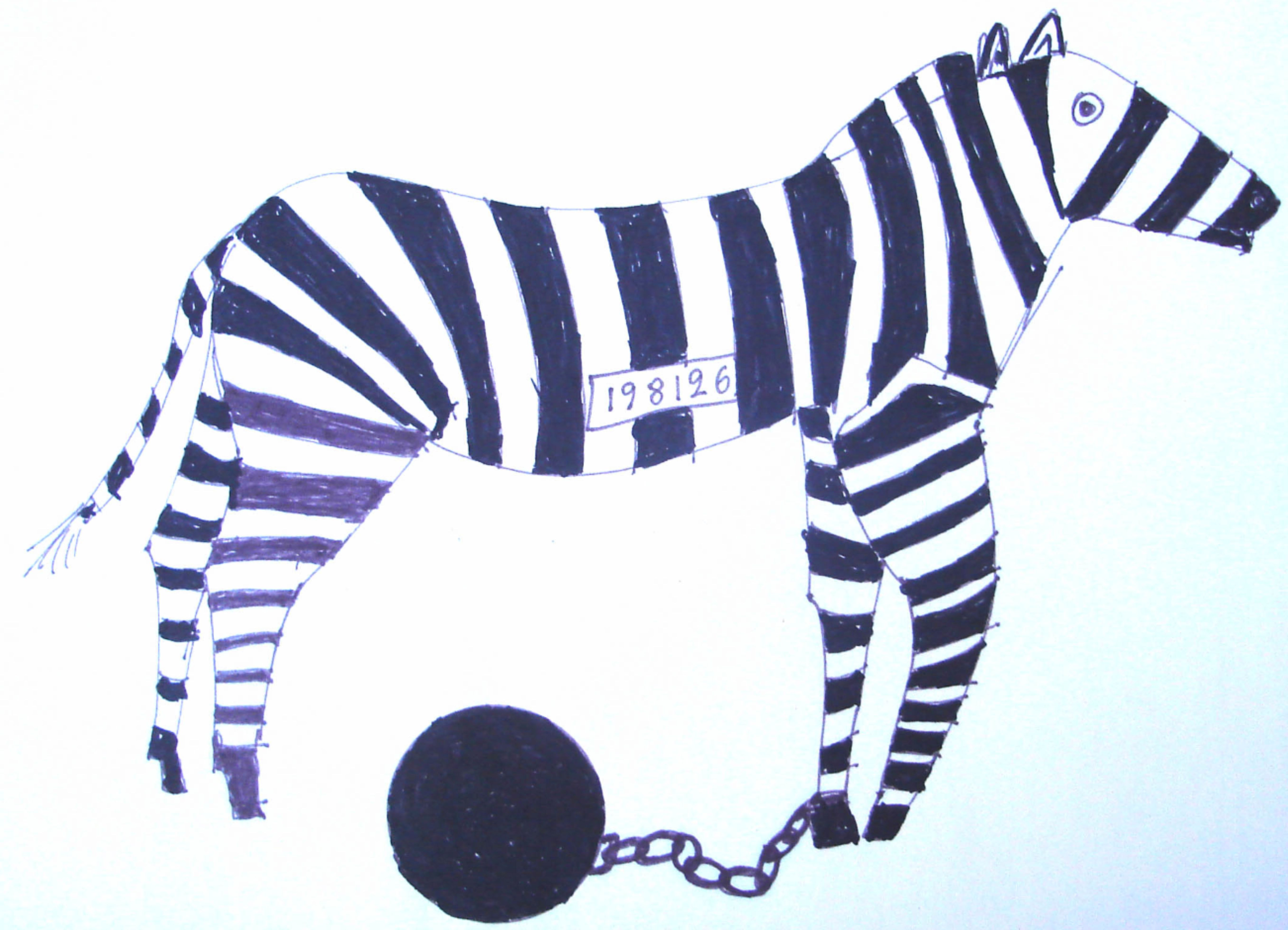 Imprisoned Zebra