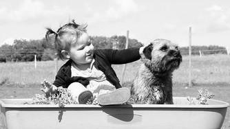 Préparer votre chien à l'arrivée d'un bébé