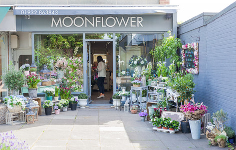 Moonflower Cobham Florist | Occasion, Event, Wedding & Bridal Flowers | Flower Delivery Cobham,Oxshott, Esher, Hersham, Leatherhead, Thames Ditton, Weybridge, Walton