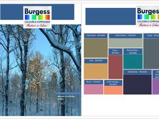 Winter Colour Trends 2016/17