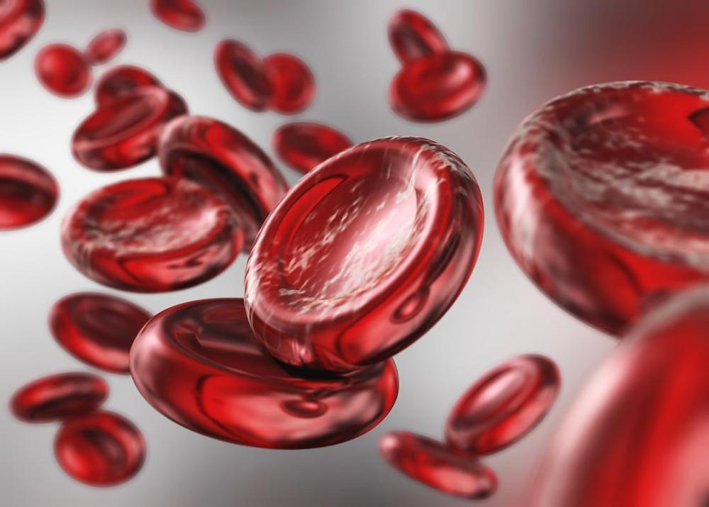Med podporuje tvorbu červených krvinek