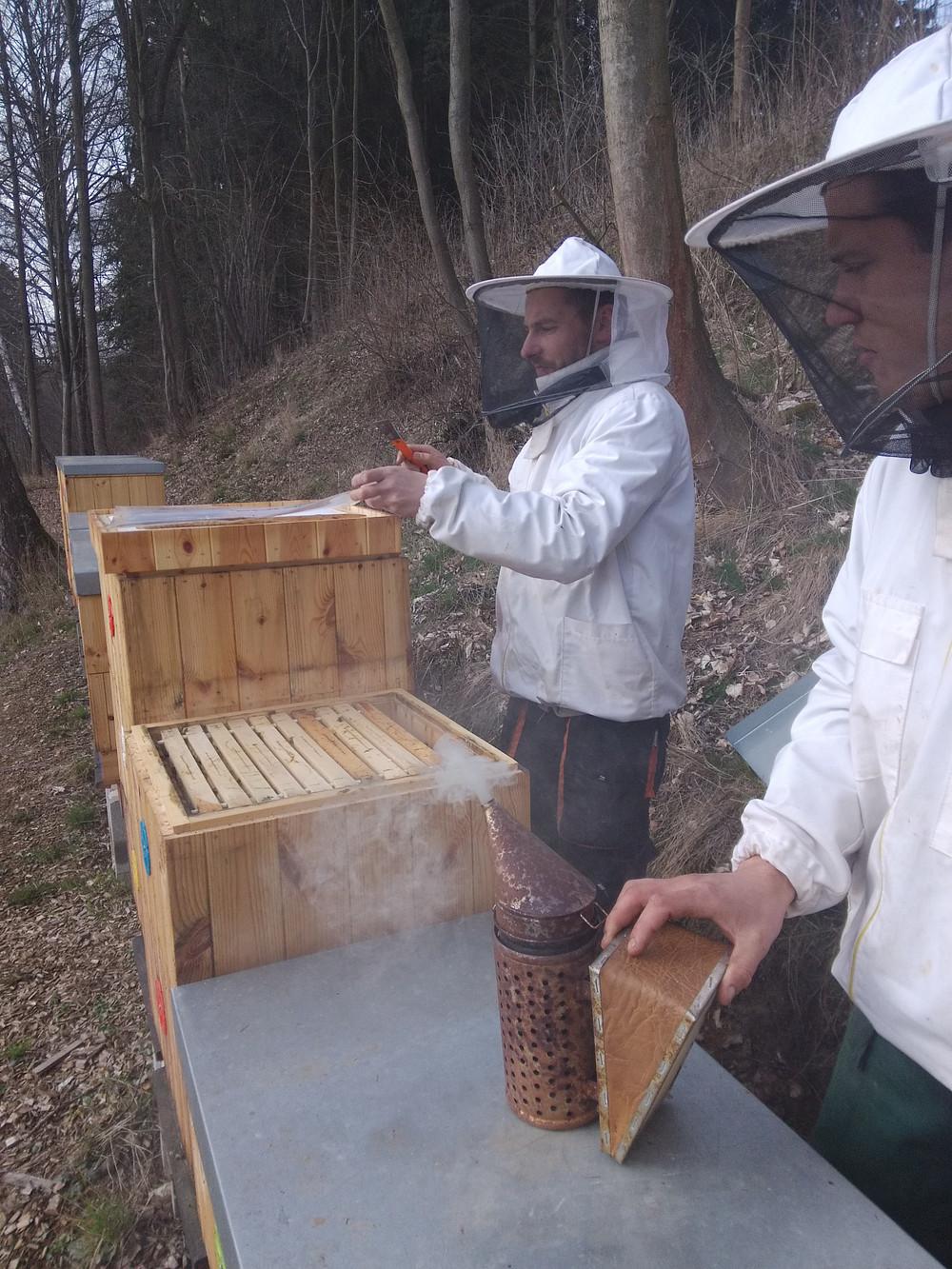 Včelař Roman a Martin dávají nové nástavky