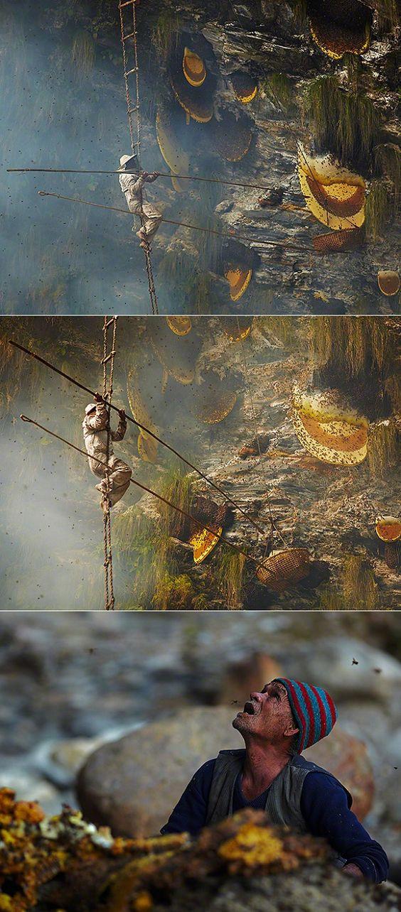 Včelaři z Nepálu
