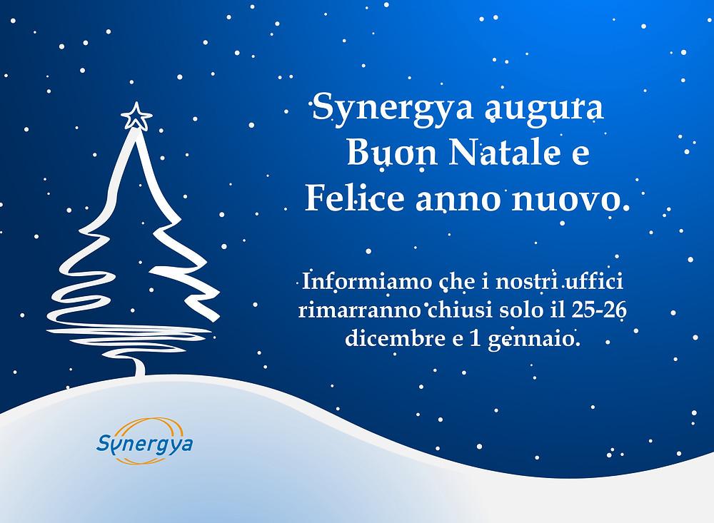 natale 2017 Synergya