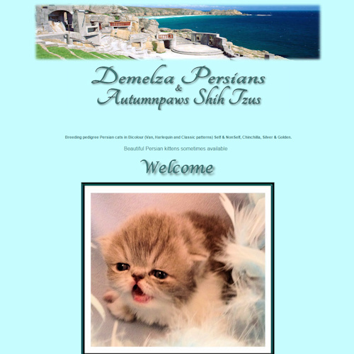 Demelza Persians