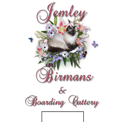 Jemley Birmans &  Boarding Cattery