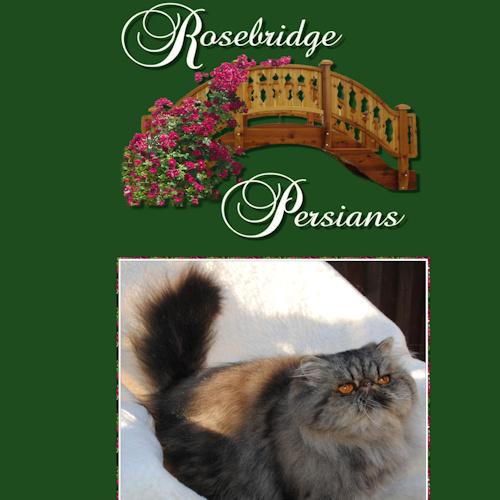 Rosebridge Persians