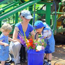 Flowers on the Farm