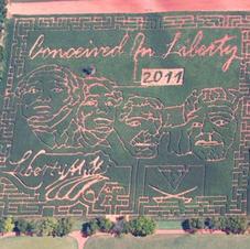 2011 Corn Maze