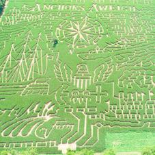 2020 Corn Maze