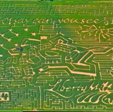 2014 Corn Maze