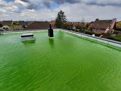 toiture terasse inondée