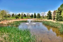 Nature Pond 41.jpg