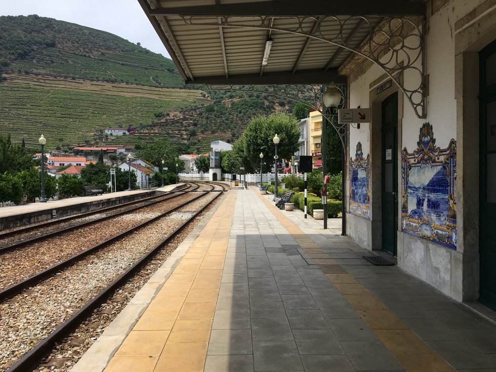 Douro Valley - Wine Tour (Pinhão Train Station)
