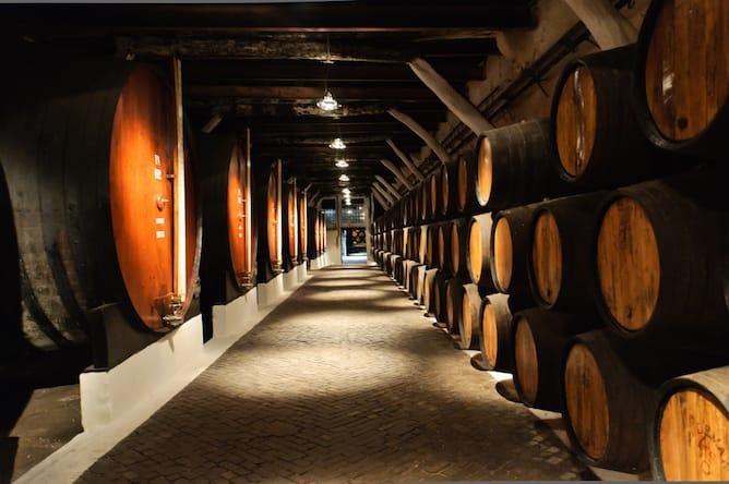 melhores-caves-vinho-porto