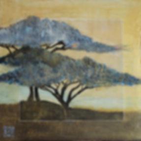 acacias-bleus-23-11-19.jpg