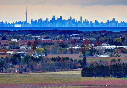 St. Davids Bench Vs Toronto.jpg