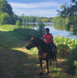 Horseriding in France