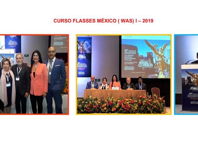 Curso FLASSES México 1