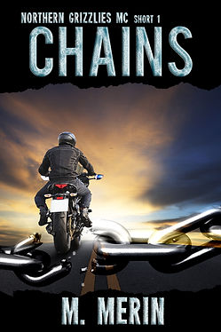 chains4.jpg