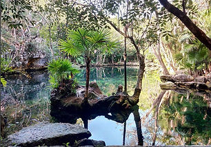 cenote-chikin-ha-playa-del-carmen-tulum-