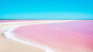 laguna-rosa-las-coloradas-a_800.jpg