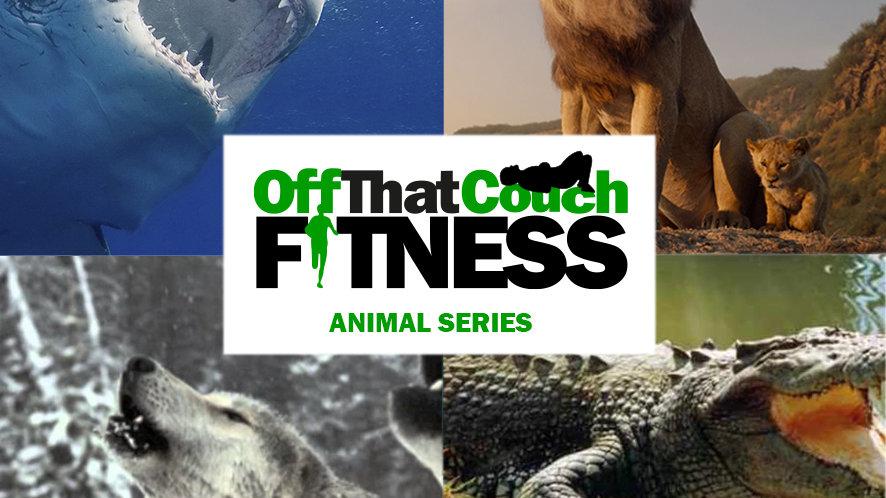 OTCF Animal Series