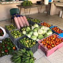 foodDistribution06.jpg