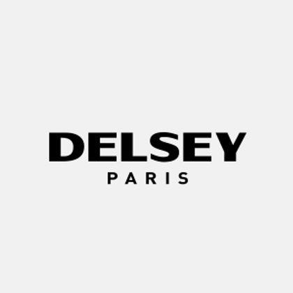 DELSEY LOGO.jpg