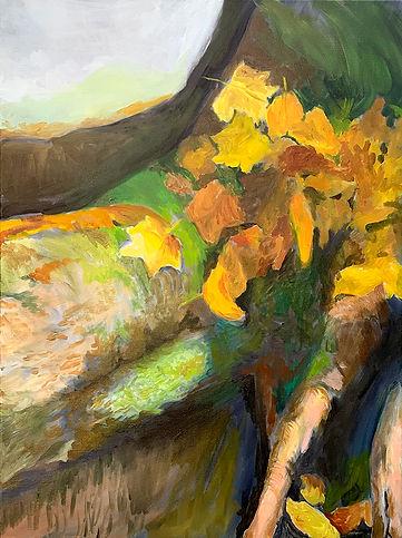 Leaf Fall - Tree Small