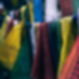 blur-close-up-color-345133.jpg