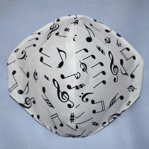 Music Notes on White