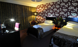 Disabled Double Room 2