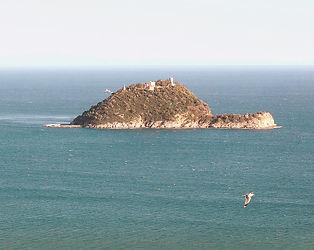 Isola-gallinara-alassio_edited.jpg