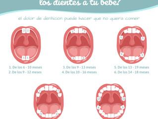 ¿Le están saliendo los dientes a tu bebé?