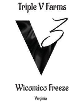 Wicomico Freeze