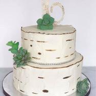 Birchwood succulent cake
