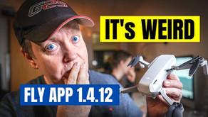 NEW DJI Fly App maybe YOU should wait?