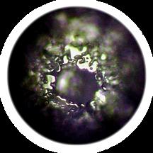 emoto_water_crystal_dest_water.png