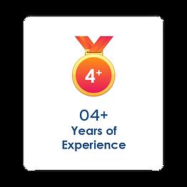 4 years of digial marketing experience blusteak