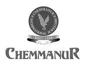 Boby chemmannur jewelery digital marketing client is blusteak media