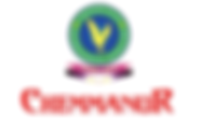 Blusteak media digital marketing agency of boby chemmanur jewellerry
